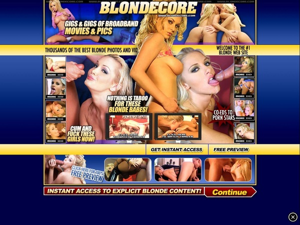 Acc For Blonde Core